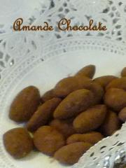 P1000908Tchocolate.jpg