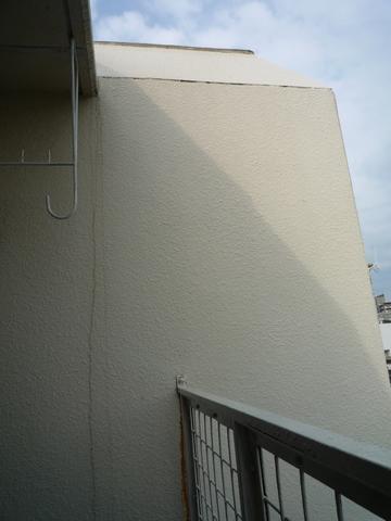 P1060001-1.jpg