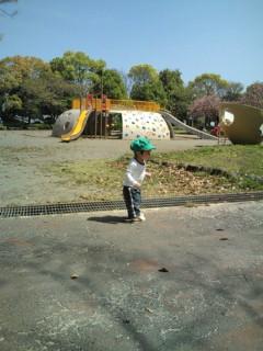 公園でウロウロ①