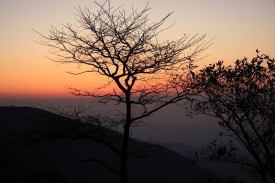日の出間近の山