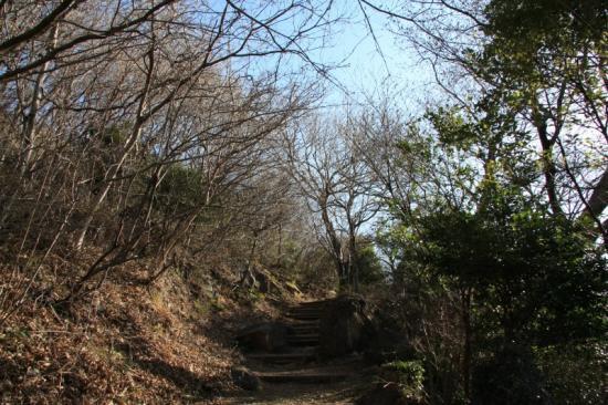 幕山山頂へ向かう登山道
