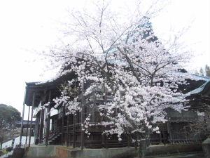 吉崎別院2