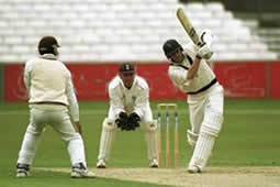 cricketpic.jpg