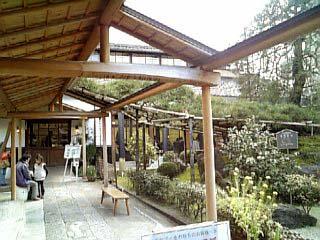 中村藤吉本店 カフェ外観