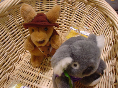 カンガルーとコアラ