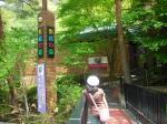 200705影絵の森美術館
