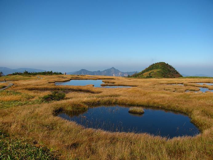 草紅葉と地塘