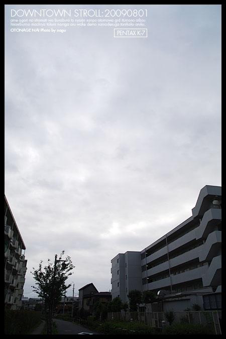 7IMGP0674.jpg