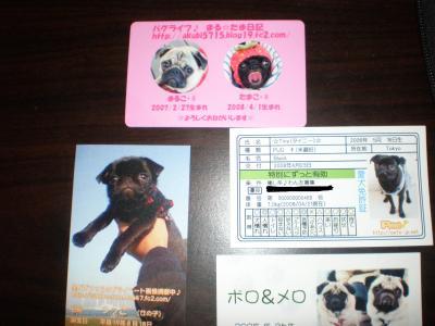 2008-10-19+088_convert_20081019203423.jpg