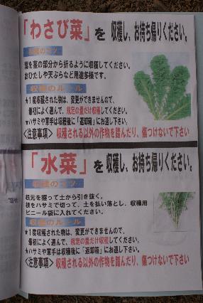 収穫マニュアル