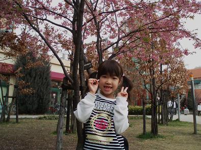 早咲き桜の下で