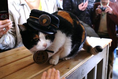 駅長たま登場!