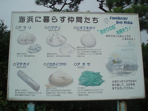 ふなばし三番瀬海浜公園2
