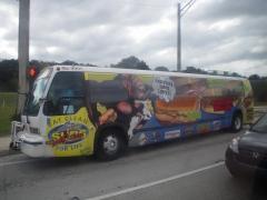 bus-01-1resized-800.jpg