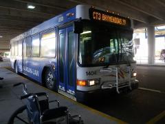 bus-01resized-800.jpg