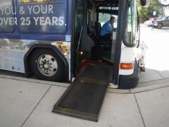 bus-07resized-800.jpg