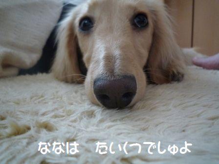 nana20090506-3