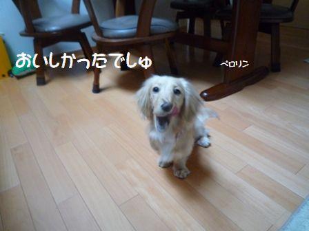 nana2009.2.28-6