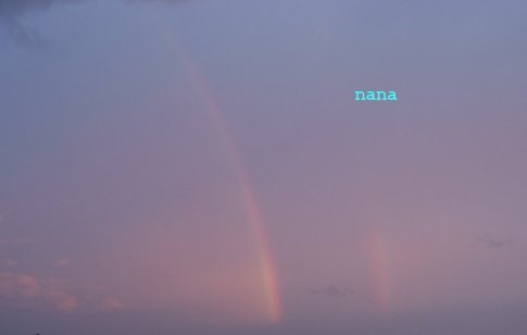 rainbow15-2_20110906190126.jpg
