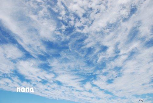 sky15-29.jpg