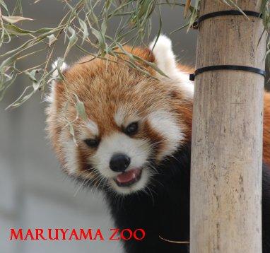zoo15-29.jpg