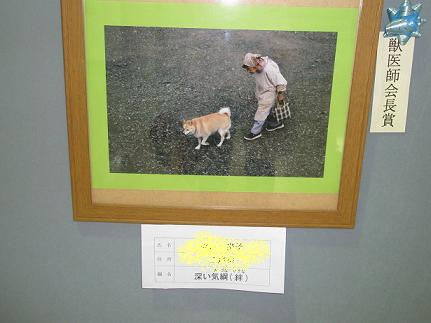 2011 会長賞
