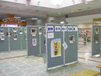 ふれあい動物写真展2011