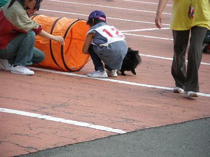 運動会2011 障害物