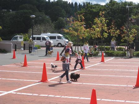 運動会2011お散歩リレー