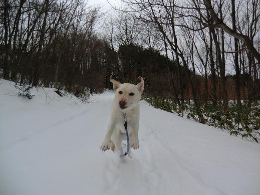 雪遊び01.11