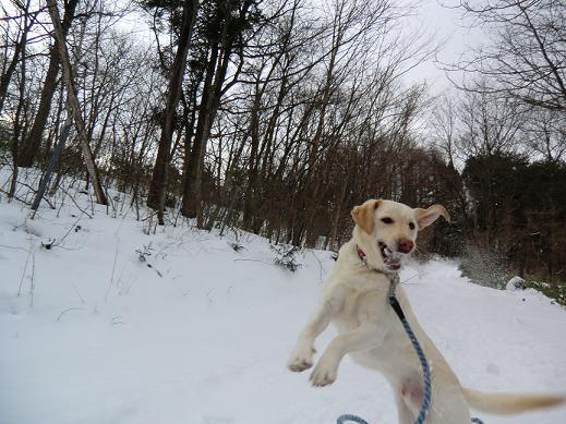 雪遊び01.11-2