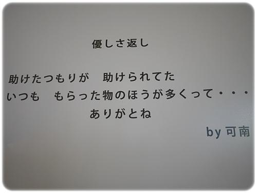 P1050105.jpg
