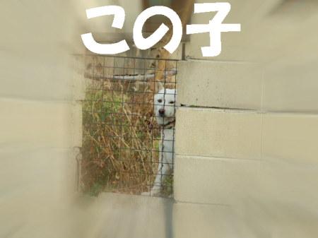 po070114 (71)