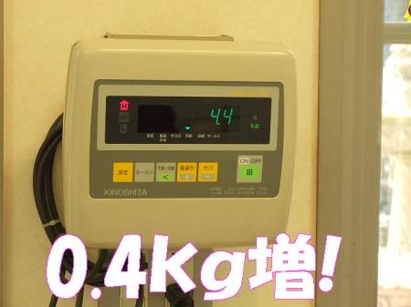 po080204 (3)