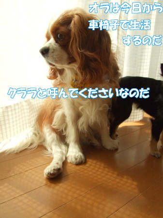 po080307 (38)0000