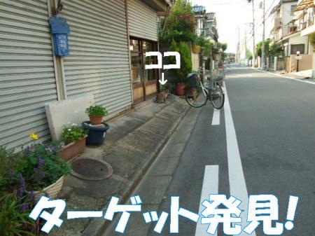 no080430 (39)