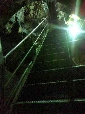 階段ですな・・・