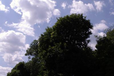 2009-06-29-1.jpg