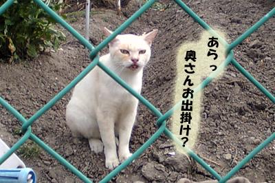 2009-09-01-3.jpg