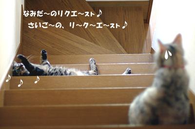 2009-09-05-1.jpg