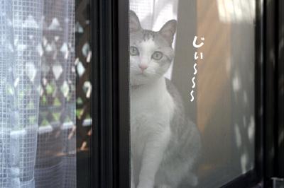 2009-09-08-3.jpg