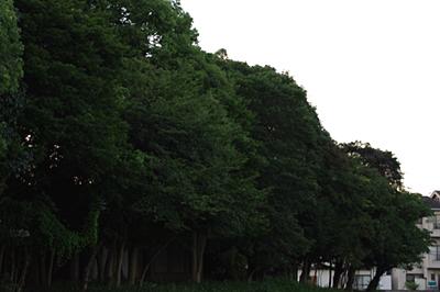 2009-09-28-1.jpg