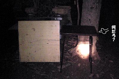2009-10-29-3.jpg