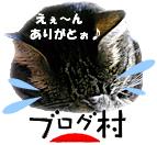 12) umi-poti2