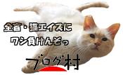 14) oton-poti2