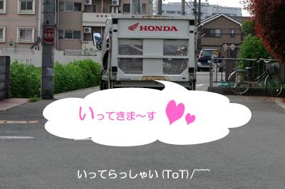hokaku46.jpg