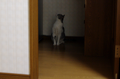 husugi3.jpg