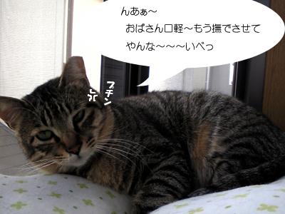 memory10.jpg