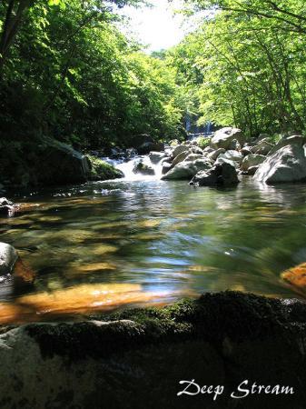 静かなる渓