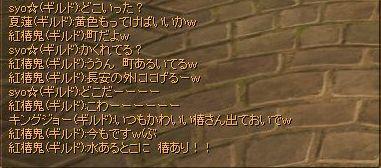 20061110033034.jpg